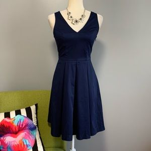 Banana Republic Blue Pleated Fit & Flare Dress